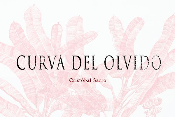 UNARTE guia oca arte cirstobal sarro exposicion puebla mexico cultura