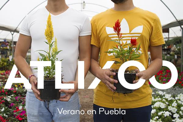 Verano en Puebla: Atlixco 🌿