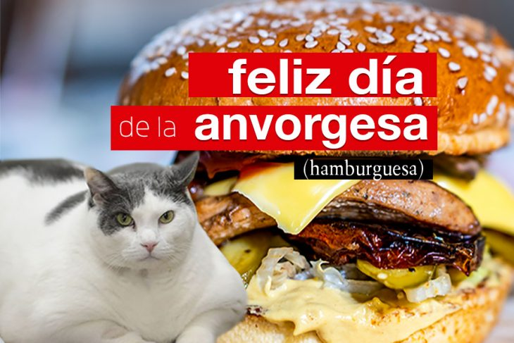 Día de la hamburguesa 🍔