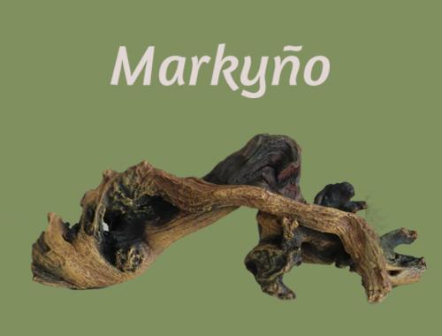 Markyño