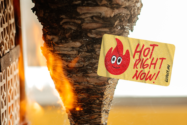 Hot Right Now: Alt Taku