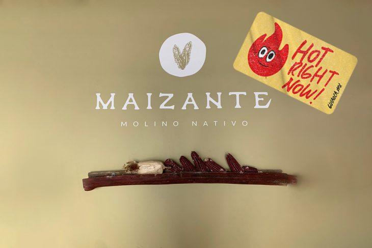 Hot Right Now: Maizante